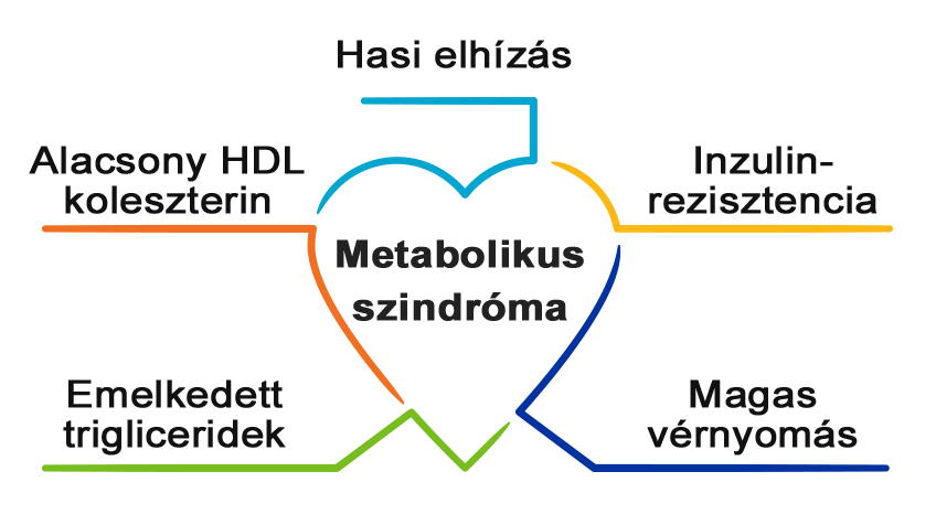 Metabolikus szindróma tünetegyüttese